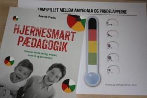 Hjernesmart pædagogik