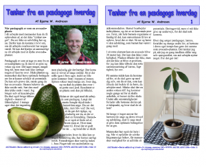 Når pædagogik er som en avocado-plante